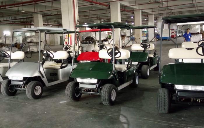 Golfkar Kopen Direct Bij Bringo Electric Vehicles Bekijk De